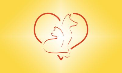 We Heart Paws: Brand Identity Design
