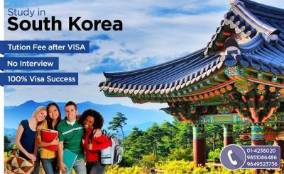 Seven Educational Consultancy(Study In Korea)